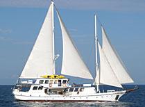 Cachalote Galapagos Yacht