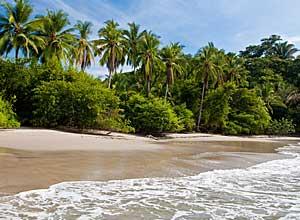 Golfo Dulce beach