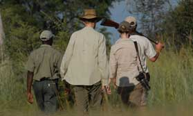 Walking Safari in Zimbabwe