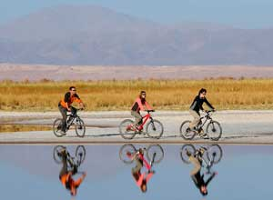 Explore Atacama by bike