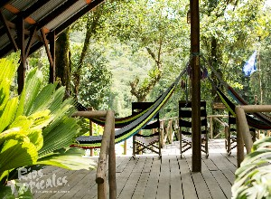 Hammock deck at Rios Tropicales Lodge