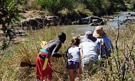 Wildlife spotting on a Karisia walking safari