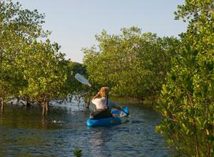 Kayaking near Nuarro Lodge